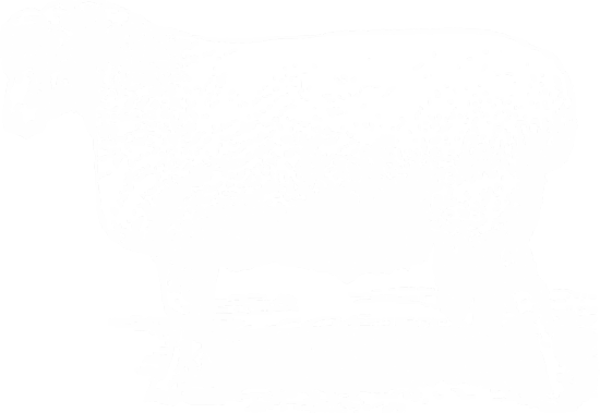 overlapping-image